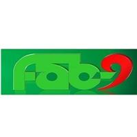 FAB-9 Corporation