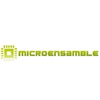 Microensamble SAS