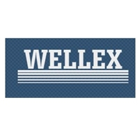 WELLEX CORPORATION